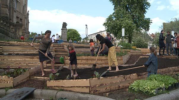 urban gardening 2.jpg